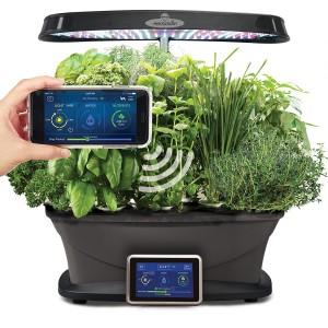 Wi-Fi Seed Pod Kit