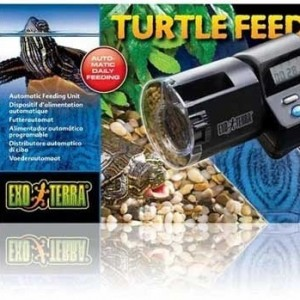 Turtle Automatic Feeder