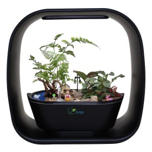 Intelligent Indoor Garden