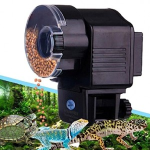 Turtle Feed Dispenser